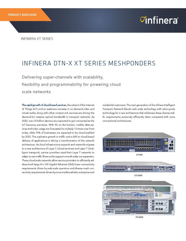 DTN-X XT Series Meshponders Datasheet